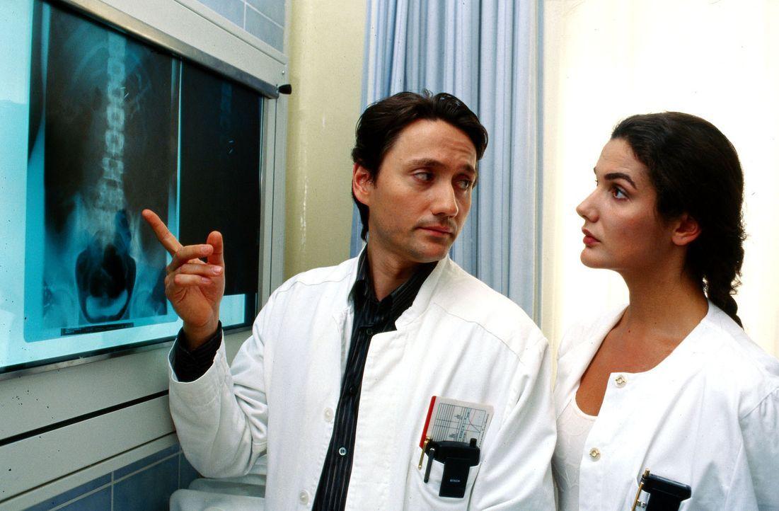 Dr. Kampmann (Ulrich Reinthaller, l.) und Dr. Anne Herzog (Anne v. Linstow, r.) diskutieren Frankies Röntgenbild. Die Eisennägel in seinem Körper si... - Bildquelle: Krajewsky Sat.1