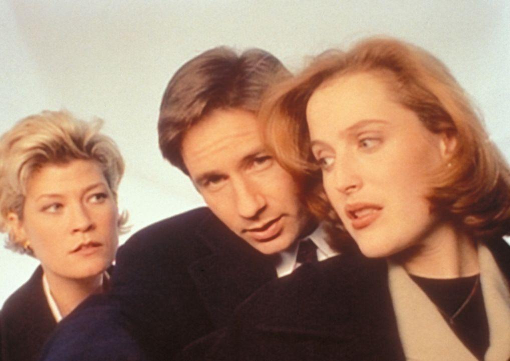 Det. Angela White (Dana Wheeler-Nicholson, l.) hat Mulder (David Duchovny, M.) und Scully (Gillian Anderson, r.) um Hilfe bei der Aufklärung einer m... - Bildquelle: TM +   2000 Twentieth Century Fox Film Corporation. All Rights Reserved.