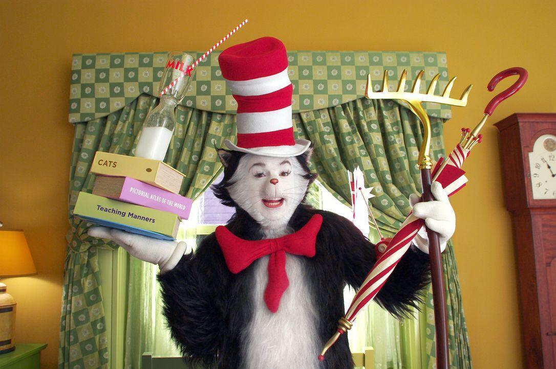 Wo der sprechende Kater mit Hut (Mike Myers) ist, da bricht das Chaos aus ... - Bildquelle: TM &   2003 DreamWorks LLC. All Rights Reserved.