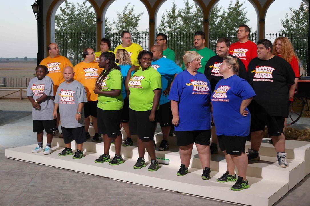 """Bei """"Biggest Loser"""" wird den Kilos der Kampf angesagt. Die 24 übergewichtigen Teilnehmer müssen ihr Durchhaltevermögen bei verschieden Wettkämpf... - Bildquelle: Enrique Cano SAT.1"""