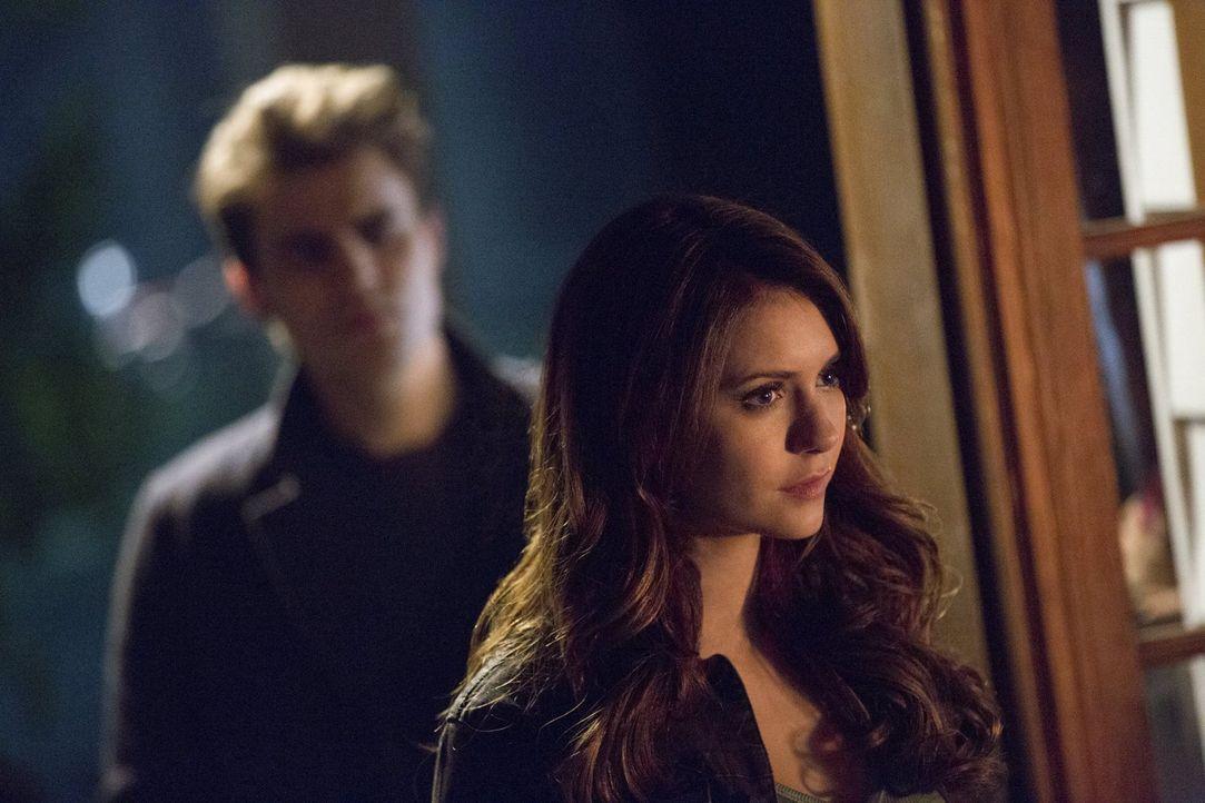 Als Stefan (Paul Wesley, l.) seinem Bruder zu Hilfe eilt, begleitet ihn Katherine (Nina Dobrev, r.) mit eigennützigen Plänen ... - Bildquelle: Warner Brothers