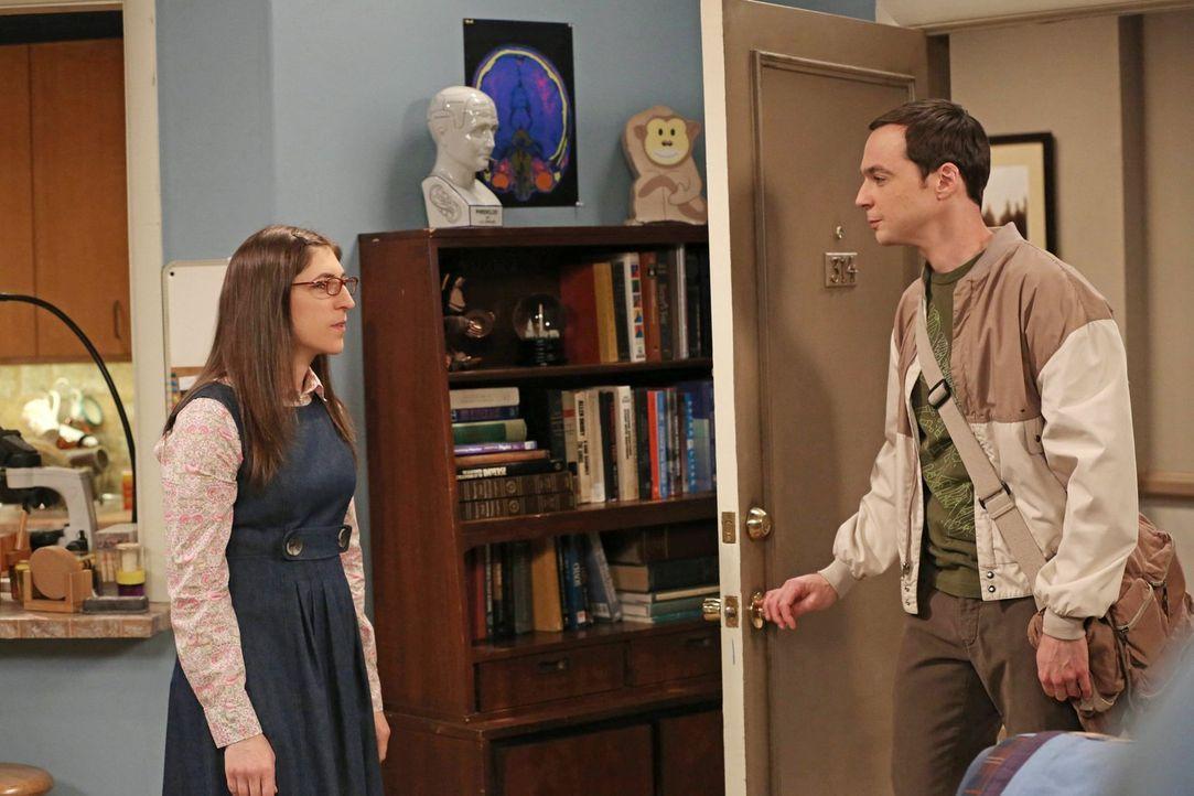 Geraten wegen zwei Spielsystemen aneinander: Sheldon (Jim Parsons, r.) und Amy (Mayim Bialik, l.) ... - Bildquelle: Warner Brothers