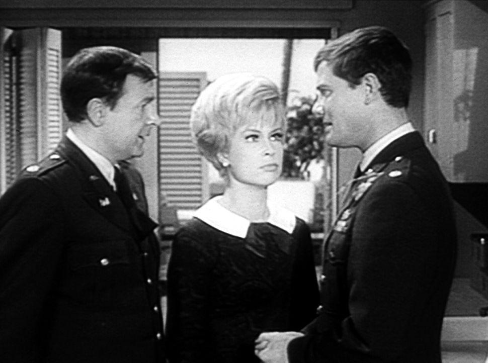 Tony (Larry Hagman, r.) ist eine Vase auf den Kopf gefallen, und er stellt Jeannie (Barbara Eden, M.) seinem Freund Roger (Bill Daily, l.) als Miss... - Bildquelle: Columbia Pictures