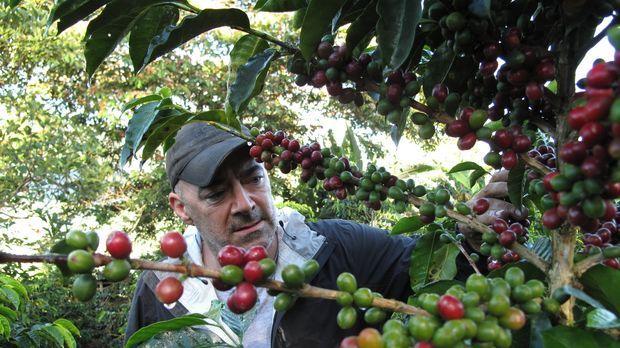 Todd Carmichael begibt sich in Bolivien auf die Suche nach exotischen Kaffeep...