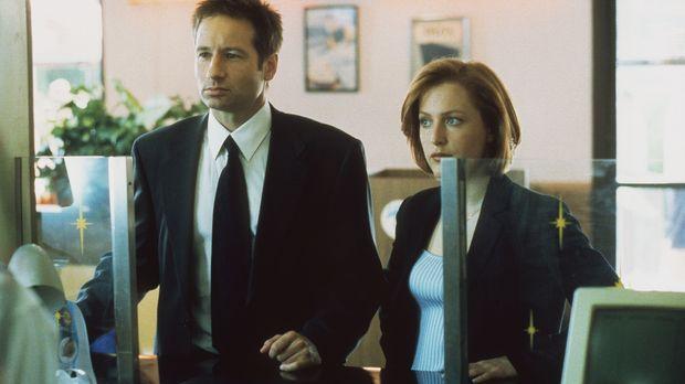 Mulder (David Duchovny, l.) und Scully (Gillian Anderson, r.) ermitteln in ei...