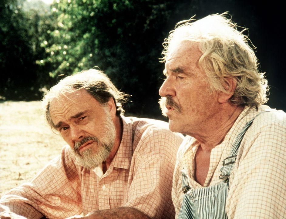 Sam (Will Geer, r.) und Mason Beardsley (John Beal, l.) schwelgen in alten Erinnerungen. - Bildquelle: American Broadcasting Company