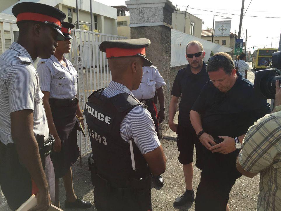 Toto (r.) und Harry (2.v.r.) gehen in Jamaika mit auf die Jagd nach einem Einbrecher, der am helllichten Tage eine Villa ausraubt. Dabei werden sie... - Bildquelle: kabel eins