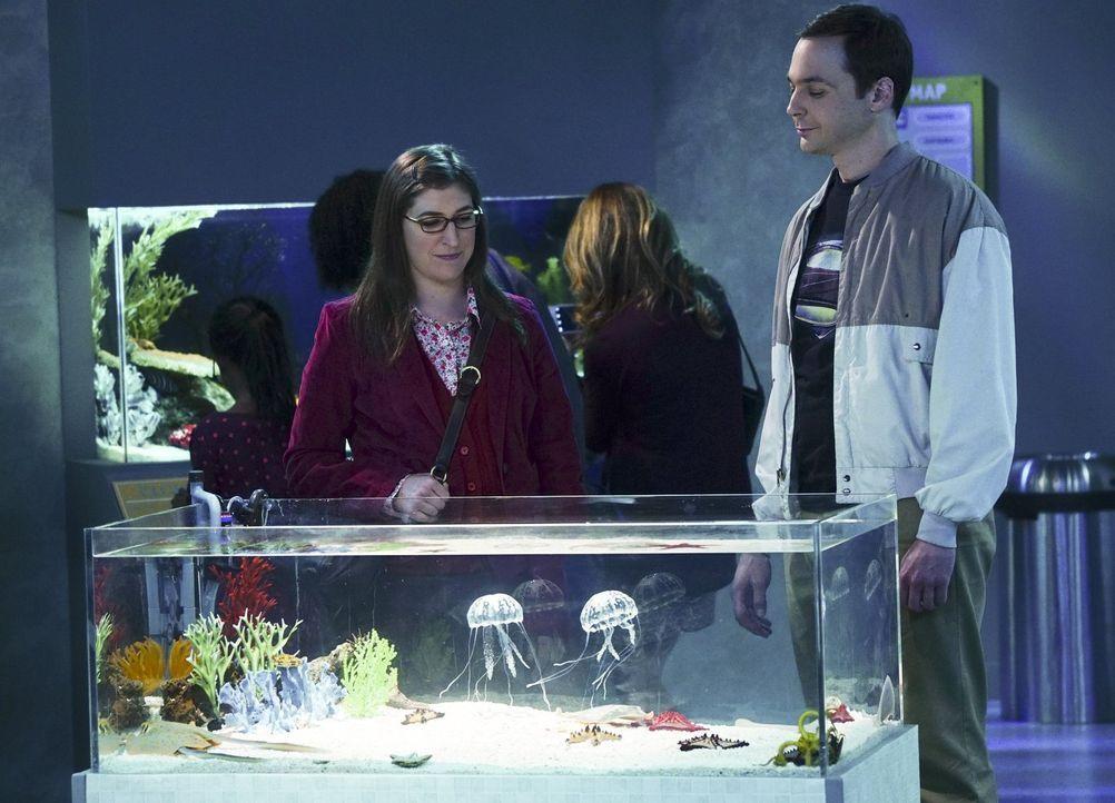 Es ist Thanksgiving. Sheldon (Jim Parsons, r.) und Amy (Mayim Bialik, l.) treffen sich als Freunde zum Mittagessen im Aquarium, während die anderen... - Bildquelle: 2015 Warner Brothers