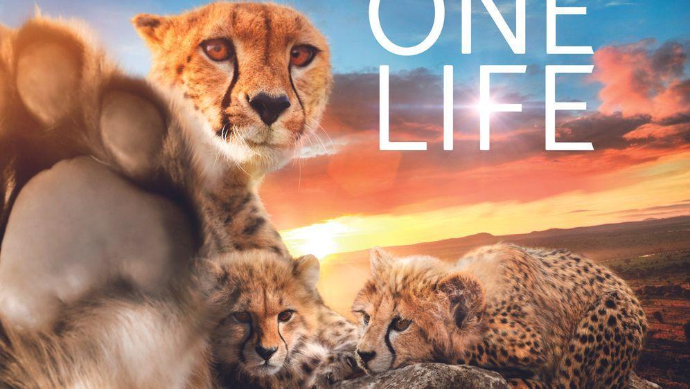 Unser Leben