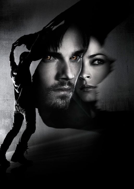 (2. Staffel) - BEAUTY AND THE BEAST - Artworl - Bildquelle: 2013 The CW Network, LLC. All rights reserved.