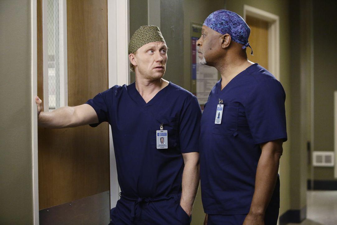 Drücken Amelia die Daumen für ihre bevorstehende Operation an Dr. Herman: Webber (James Pickes Jr., r.) und Owen (Kevin McKidd, l.) ... - Bildquelle: ABC Studios