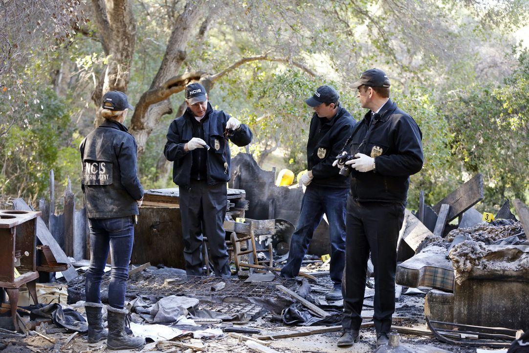 Ein Mann namens Leland Robert Spears wird erschossen aufgefunden. Gibbs (Mark Harmon, 2.v.l.), McGee (Sean Murray, 2.v.r.), Anthony (Michael Weather... - Bildquelle: CBS Television