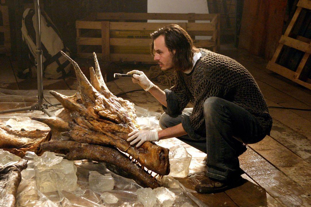 Mit viel Liebe zum Detail gelingt es dem Paläontologen Paul Hilton-Tanner, die Welt der Drachen auferstehen zu lassen ...