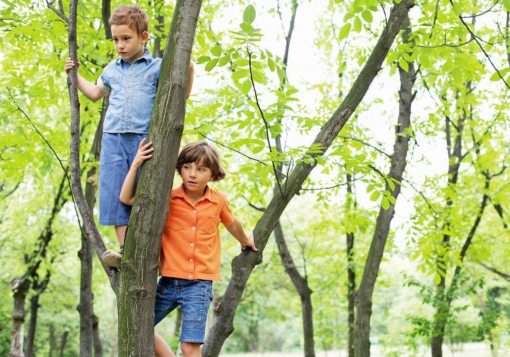 jungen-klettern-auf-baum-kinder-brauchen-freizeit-MEV-Verlag-GmbH - Bildquelle: MEV-Verlag GmbH