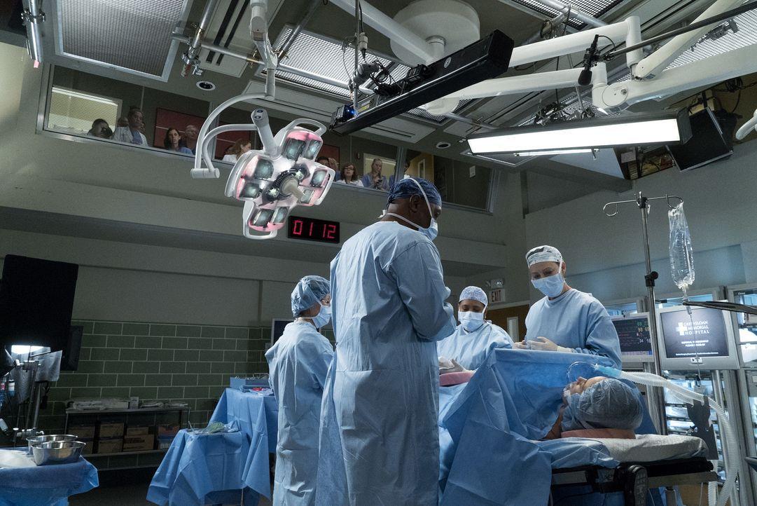 Miranda (Chandra Wilson, M.) muss sich neben ihrer Arbeit als Ärztin auch noch um den Wiederaufbau einiger Krankenhausflügel kümmern, die durch den... - Bildquelle: Richard Cartwright 2017 American Broadcasting Companies, Inc. All rights reserved.
