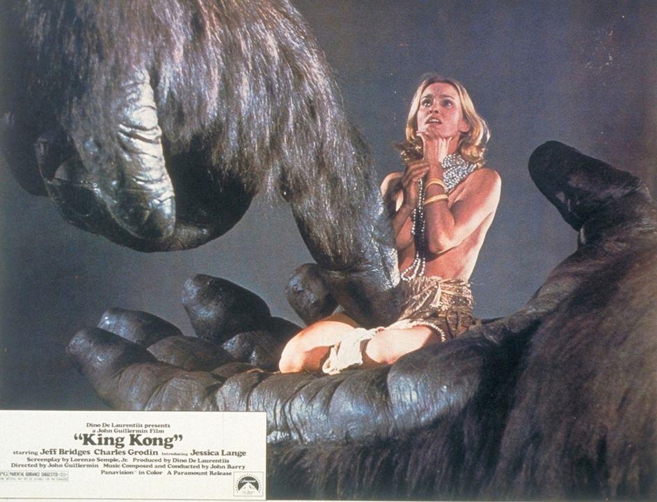 Auf einer Insel im Stillen Ozean verschleppt der riesige Gorilla King Kong die anmutige Dawn (Jessica Lange) ... - Bildquelle: Paramount Pictures