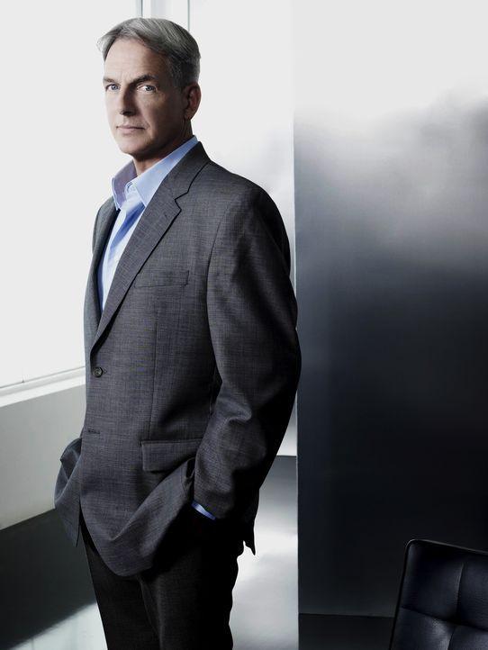 (7. Staffel) - Gibt alles, um einen Fall zu lösen: Gibbs (Mark Harmon) ... - Bildquelle: CBS Television