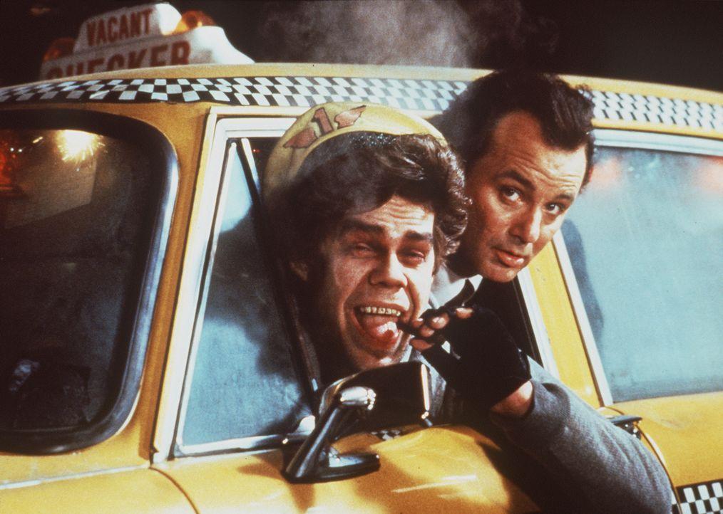 Mit der Hilfe eines ungewöhnlichen Taxifahrers (David Johansen, l.) erlebt Frank Cross (Bill Murray r.)  das triste und einsame Weihnachtsfest sein... - Bildquelle: Paramount Pictures