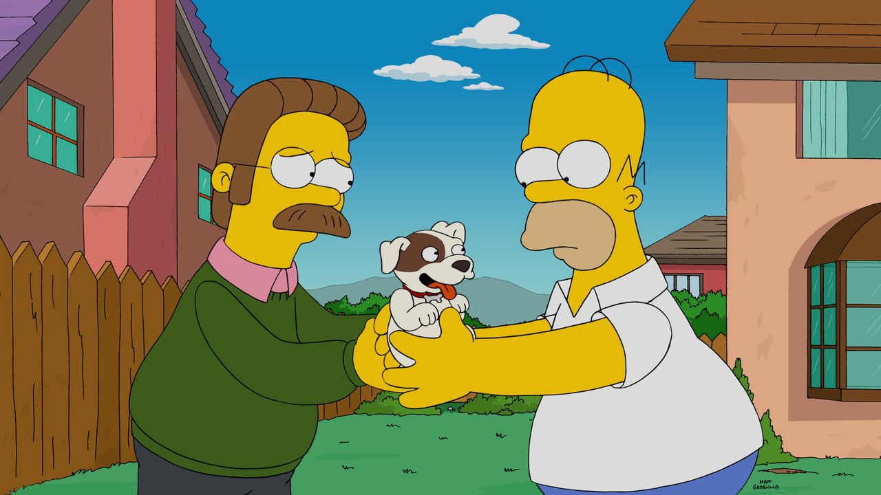 Ein neuer Hund für die Simpsons? Neds (l.) kleines Haustiert scheint sich viel mehr von Homer (r.) angezogen zu fühlen ... - Bildquelle: 2014 Twentieth Century Fox Film Corporation. All rights reserved.