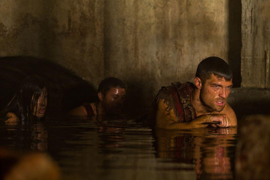 Kaum erfahren Spartacus (Liam McIntyre, r.) und Agron (Daniel Feuerriegel, l.), dass Crixus und Drago in der Arena hingerichtet werden sollen, da su... - Bildquelle: 2011 Starz Entertainment, LLC. All rights reserved.