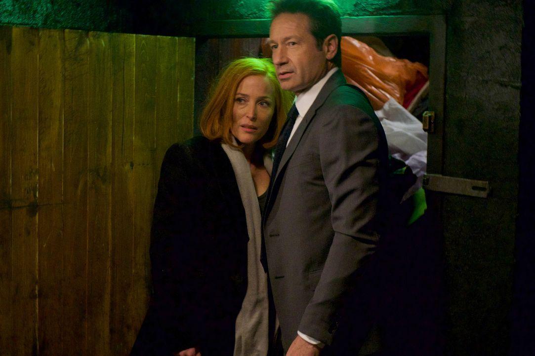 Beschäftigen sich nicht nur mit einem neuen Fall, sondern auch mit ihrer Beziehung zueinander und ihrer Zukunft: Scully (Gillian Anderson, l.) und M... - Bildquelle: Shane Harvey 2018 Fox and its related entities.  All rights reserved.