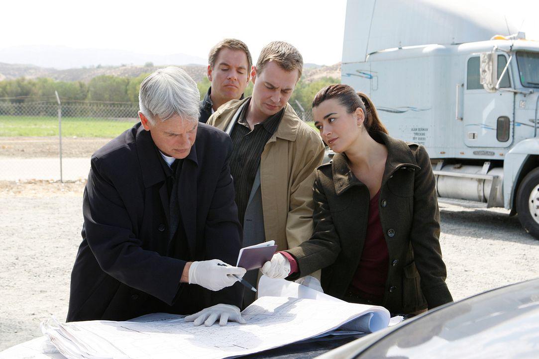 Ein neuer Mordfall bereitet Gibbs (Mark Harmon, l.), Tony (Michael Weatherly, 2.v.l.), Ziva (Cote de Pablo, r.) und McGee (Sean Murray, 2.v.r.) Kopf... - Bildquelle: CBS Television