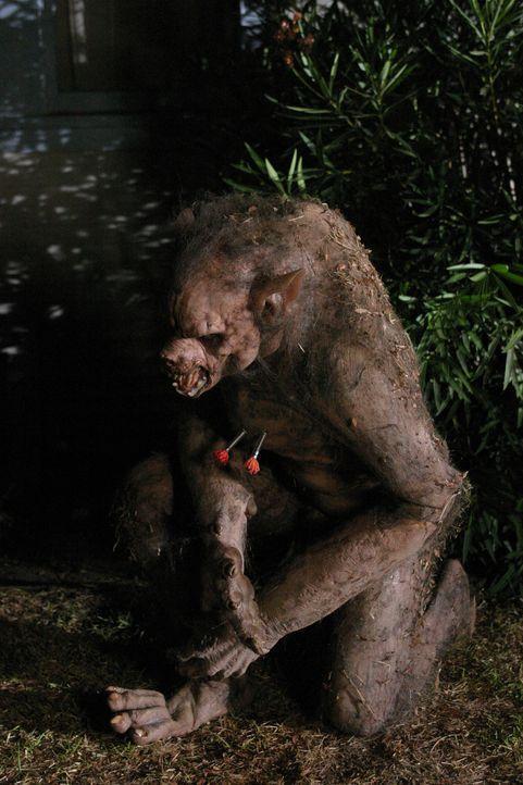 """Die junge Nina wird in eine Werwölfin verwandelt und nun von """"Feinschmeckern"""" gejagt. - Bildquelle: The WB Television Network"""