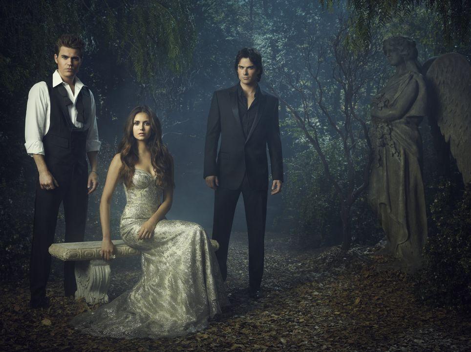(4 .Staffel) - Vampire Diaries - Artwork - Bildquelle: Warner Brothers