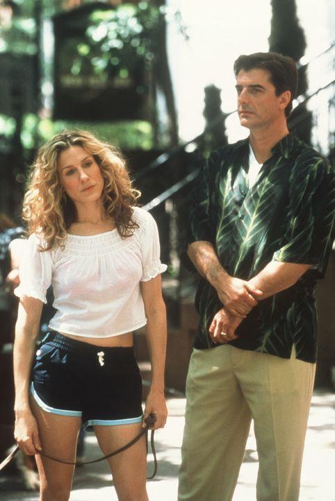 Carrie (Sarah Jessica Parker, l.) hat mit Big (Chris Noth, r.) geschlafen. Ihr ist völlig klar, dass sich so etwas nicht wiederholen darf. Sie ruft... - Bildquelle: Paramount Pictures