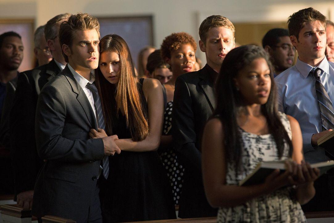 Für einen jungen Vampir gibt es nichts verlockenderes als Blut, das müssen auch Stefan (Paul Wesley, Mitte l.), Elena (Nina Dobrev, Mitte 2. v. l.),... - Bildquelle: Warner Brothers