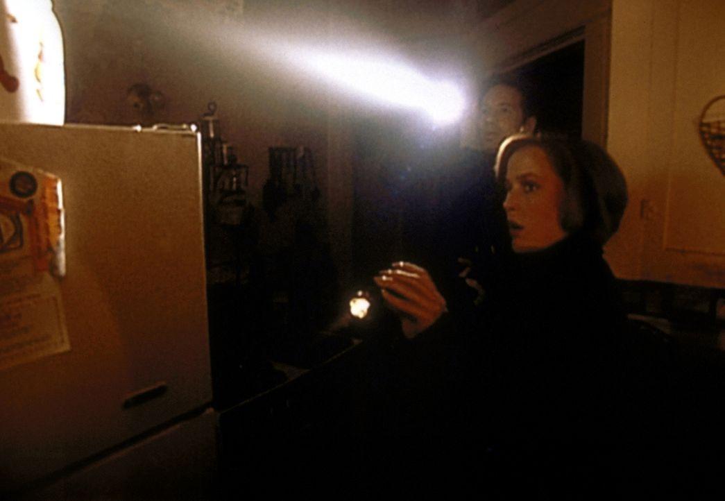 Mulder (David Duchovny, l.) und Scully (Gillian Anderson, r.) durchsuchen ein altes leer stehendes Haus ... - Bildquelle: TM +   2000 Twentieth Century Fox Film Corporation. All Rights Reserved.