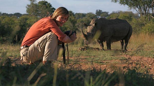Austin Stevens reist nach Swasiland, um dort die seltenen Nashörner Afrikas z...