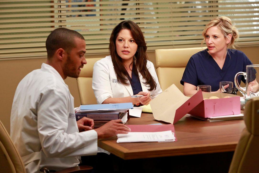 Jackson (Jesse Williams, l.) soll die Chefposition übernehmen. Callie (Sara Ramirez, M.) und Arizona (Jessica Capshaw, r.) reagieren gereizt auf die... - Bildquelle: ABC Studios