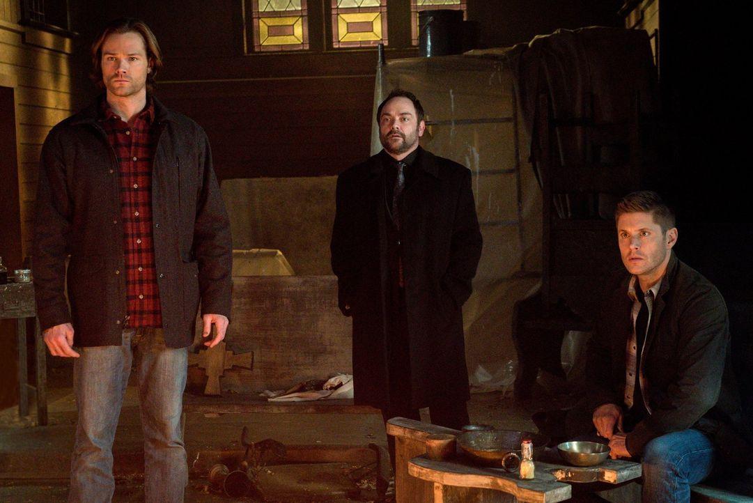Crowley (Mark Sheppard, M.) offenbart Sam (Jared Padalecki, l.) und Dean (Jensen Ackles, r.), dass er angeblich einen Weg gefunden hat, um Amara auf... - Bildquelle: 2014 Warner Brothers