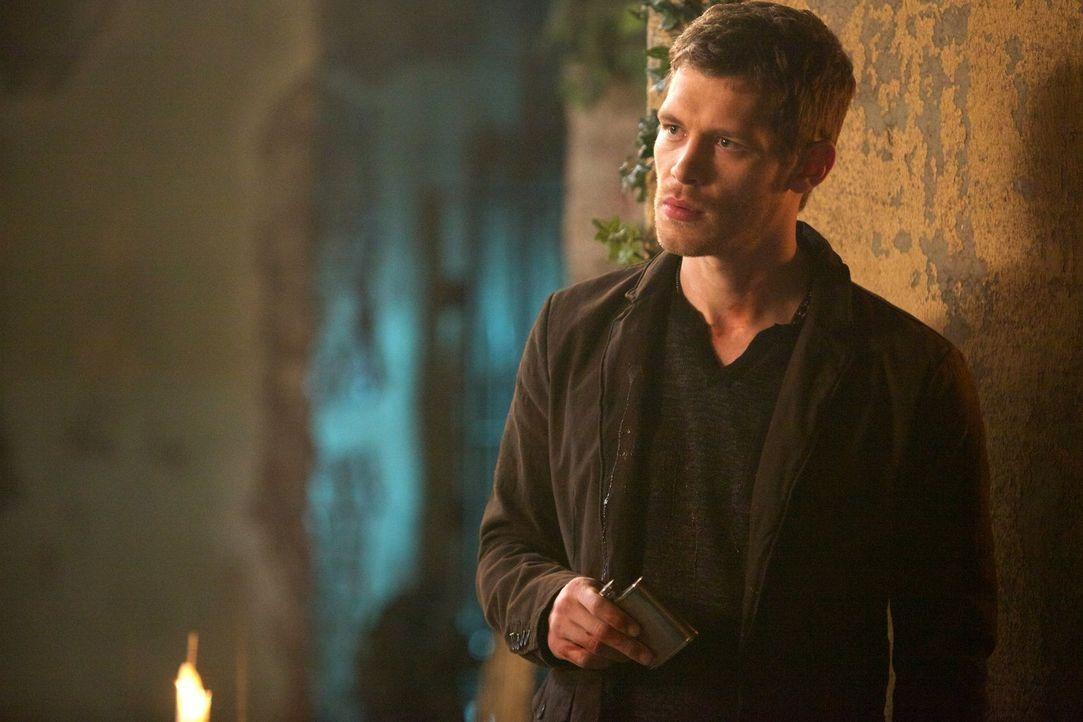Anders als Marcel setzt Klaus (Joseph Morgan) nicht auf Abmachungen mit den Menschen - mit verheerenden Folgen ... - Bildquelle: Warner Bros. Television