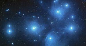 Ein Blick in den Himmel verrät, was die Zukunft für die einzelnen Sternzeiche...