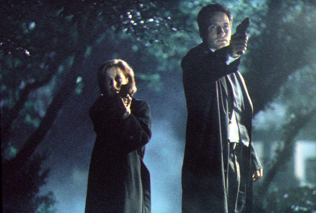 Mulder (David Duchovny, r.) und Scully (Gillian Anderson, l.) halten einen Verdächtigen in Schach, der ein Dämon sein soll und angeblich sein ungebo... - Bildquelle: TM +   2000 Twentieth Century Fox Film Corporation. All Rights Reserved.