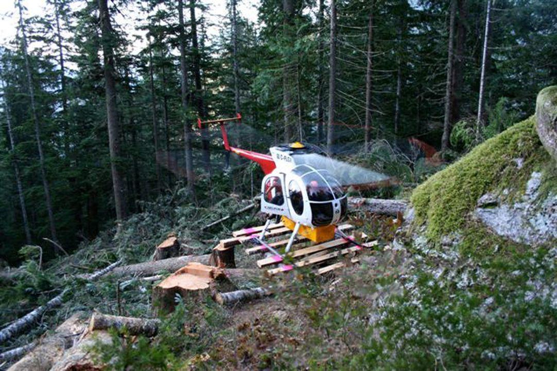 Die Heli-Loggers - eine Truppe tollkühner Holzfäller, mit dem gefährlichsten Job der Welt. - Bildquelle: Patrick Cummings kabel eins