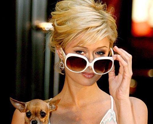 Bildergalerie Paris Hilton | Frühstücksfernsehen | Ratgeber & Magazine - Bildquelle: dpa