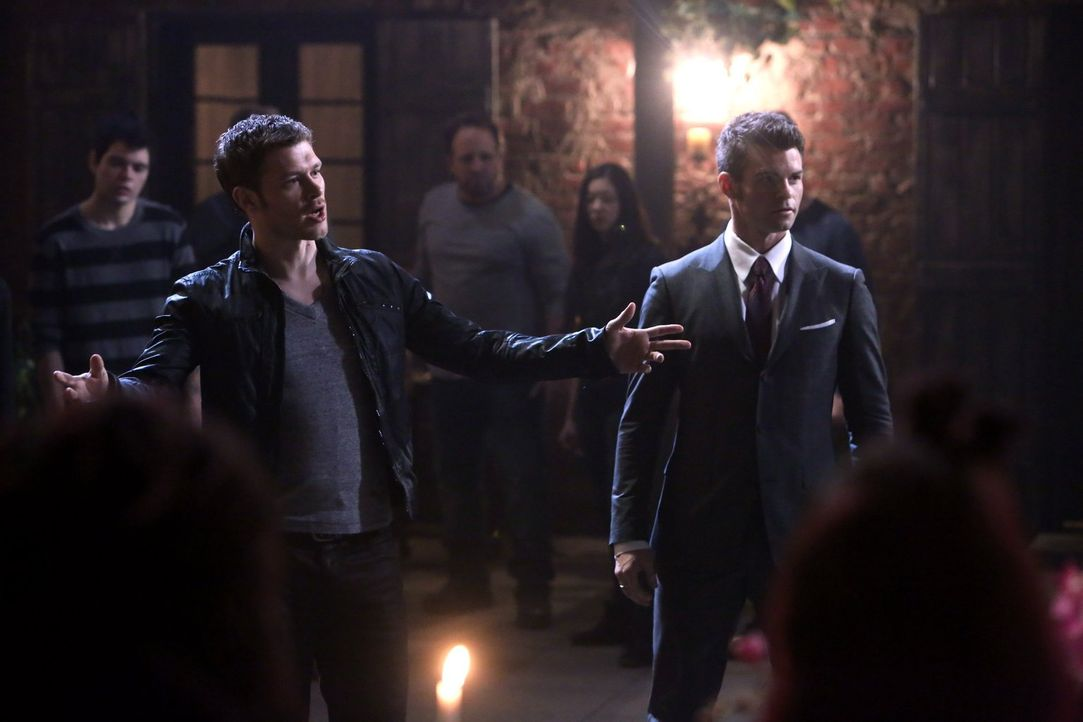 Kämpfen Elijah (Daniel Gillies, r.) und Klaus (Joseph Morgan, l.) wirklich gegen ihre wahren Feinde? - Bildquelle: Warner Bros. Television