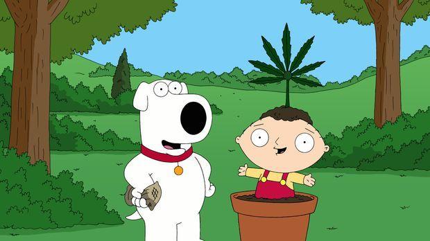 Als Brian (l.) wegen des Besitzes einer Kleinstmenge Marihuana verhaftet und...