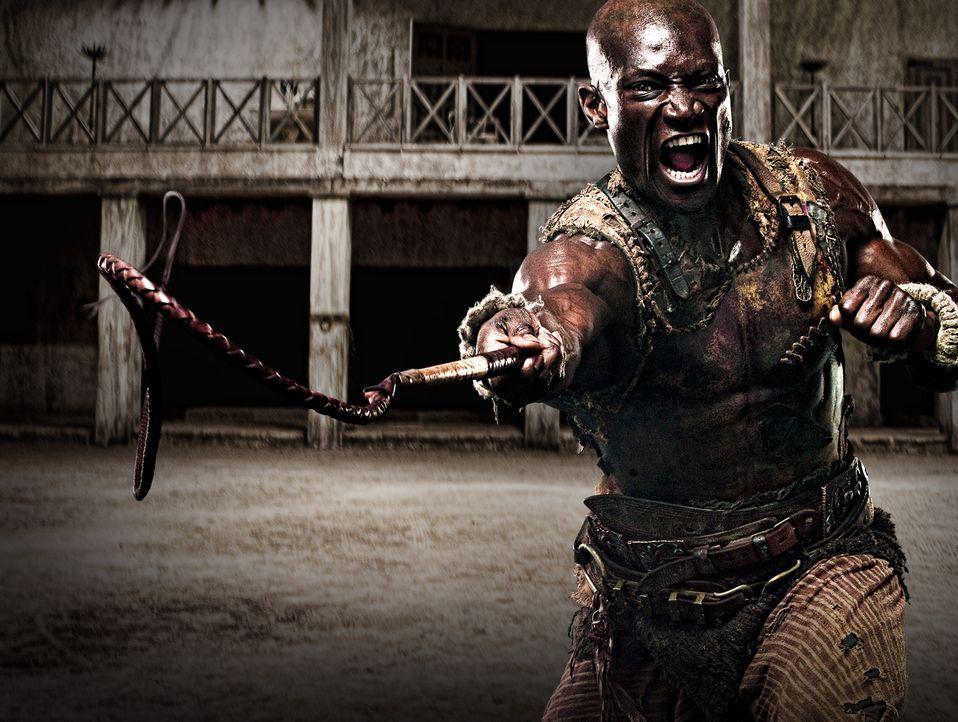 Drago (Peter Mensah) ist Sklave und Trainer der Gladiatoren in Batiatus' Gladiatorenschule. Er glaubt an die Ehre der Schule, bis er jedoch eines Be... - Bildquelle: 2009 Starz Entertainment, LLC