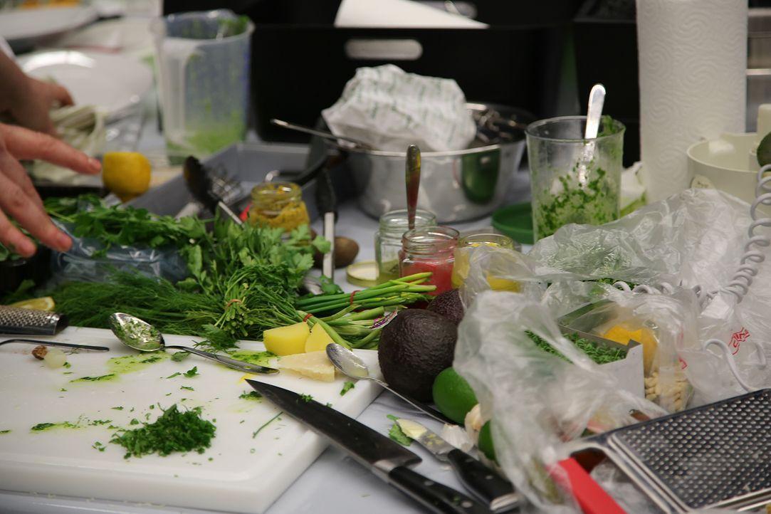 The-Taste-s02-Probekochen-5 - Bildquelle: redseven