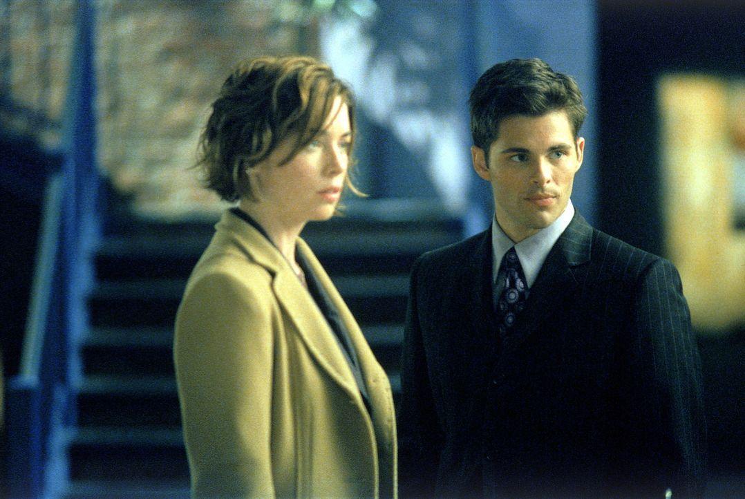 Als Jenny Shaw (Julianne Nicholson, l.) und Glenn Foy (James Marsden, r.) plötzlich in Allys Leben auftauchen, ist das Chaos vorprogrammiert ... - Bildquelle: 2001 Twentieth Century Fox Film Corporation. All rights reserved.