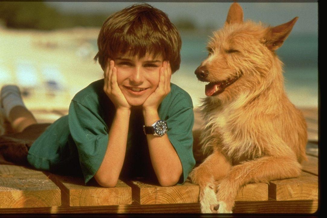 Jordan Barnett (Miko Hughes) und sein kleiner Hund Zeus verstehen sich prächtig ...