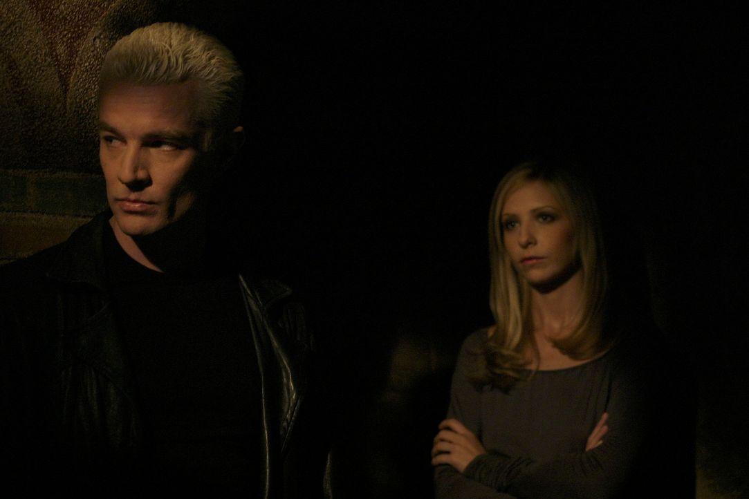 Im finalen Kampf gegen das Ur-Böse: Spike (James Marsters, l.) und Buffy (Sarah Michelle Gellar, r.) ... - Bildquelle: TM +   Twentieth Century Fox Film Corporation. All Rights Reserved.
