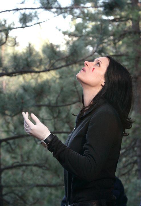 Macht eine blutige Entdeckung: Emily Prentiss (Paget Brewster) ... - Bildquelle: Touchstone Television