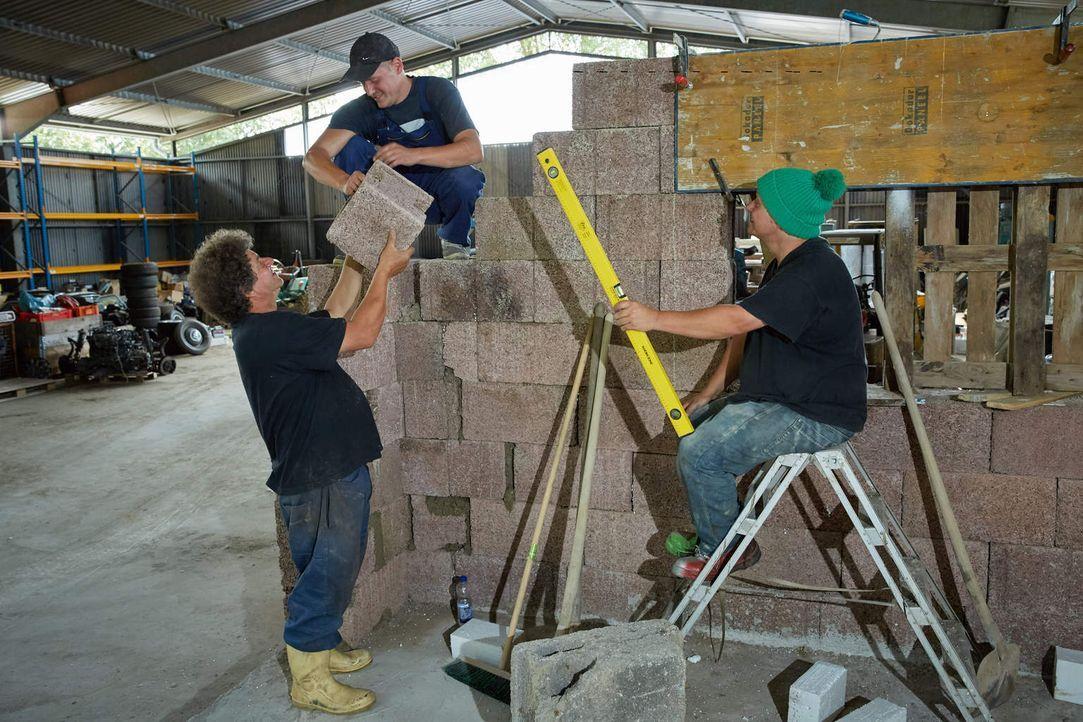 Es gibt viel zu tun: Uwe (l.), Thommy (M.) und Manni  (r.) möchten sich einen eigenen neuen Laden aufbauen, mit dem sie sich auf Old- und Youngtimer... - Bildquelle: Guido Engels kabel eins