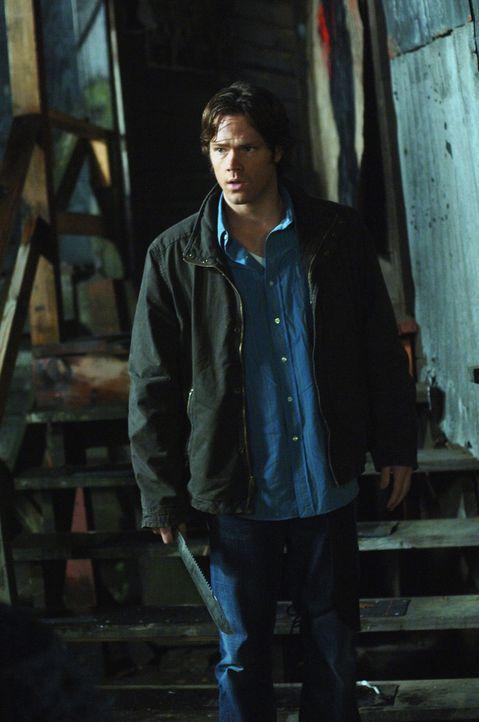 Sam (Jared Padalecki) und Dean entdecken Dixon, einen Vampir, der in Bars Vampirblut an unverdächtige Frauen gibt ... - Bildquelle: Warner Bros. Television