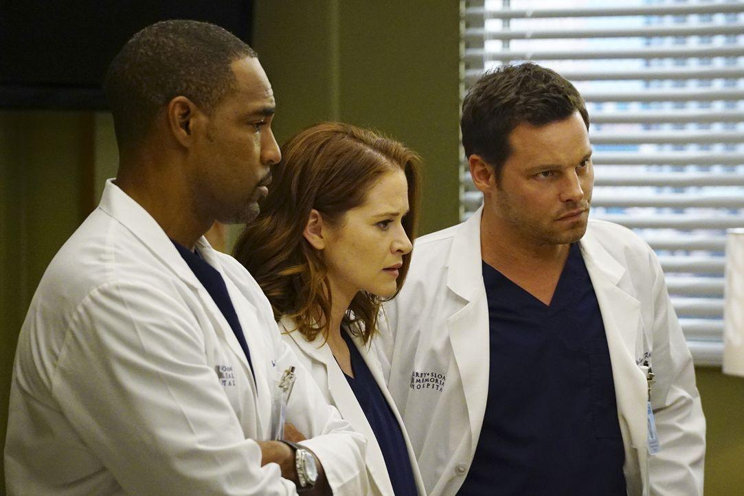 Müssen sich um einen schwangeren Teenager kümmern: Alex (Justin Chambers, r.), April (Sarah Drew, M.) und Ben (Jason George, l.) ... - Bildquelle: Richard Cartwright ABC Studios